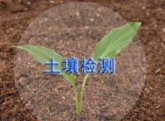 土壤土质检测/监测